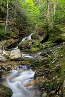 Cascade along Cold Brook in Randolph, New Hampshire during the summer months. This is believed to be the lower section of the forgotten Tertia Cascade...