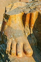 Egypt, Nile Delta, Tanis, exhibition of several ancient artifacts : Foot of a colossus.
