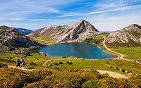 Enol Lake, The Lakes of Covadonga, Cangas de Onis Council, Peaks of Europe, Picos de Europa National Park, Asturias, Spain, Europe.