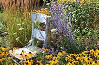 A rustic, blue, wooden chair in a garden surrounded by tall grasses, Black Eyed Susans, Queen Anne's Lace, Lavender, and Bee Balm.