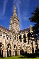 Salisbury Cathedral Wiltshire England.