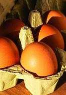 fresh eggs from supermarket UK.