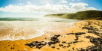 Tranquil Tasmanian beach paradise of a west coast bay, untouched with seaweed, ocean mist and nature details. Seashore taken, Trial Harbour, Tasmania,...