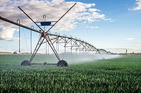Irrigation system in action at a farm near Lusaka, Zambia.