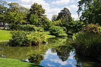 Water garden, Jardins des Plantes, Nantes, Loire Atlantique, France