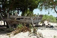 Bagamoyo beach. Surroundings of Dar es Salaam. Tanzania.