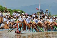 Myanmar, Shan State, Phaung Daw Oo village, Inle Lake festival, Boat race.