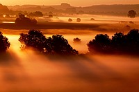 Beautiful landscape in golden light. Sunrise in the riparian zones of the Woernitz river in fog - Hesselberg region, Bavaria/Germany