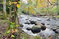 Arenal river in the Sierra de Gredos. Arenas de San Pedro. Avila. Castilla Leon. Spain. Europe.