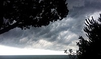 Silhouettes of trees and storm clouds. Caldes d´Estrac. Maresme, Barcelona province, Catalonia, Spain