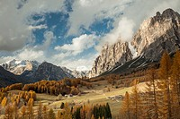 Autumn afternoon on an alpine meadow near Cortina d'Ampezzo, Dolomites, Italy.
