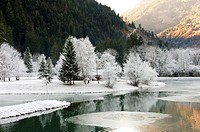 A frosty landscape in the Vallée du Beaufortain, Savoie, France, Europe.