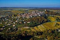 France, Cher 18, Berry, Sancerre village, vineyard in autumn, aerial view.