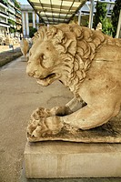 One of the two larger-than-life lions flanked the stele of Peithonikos in the funerary enclosure from the northern cemetery of Piraeus at Tambouria. T...