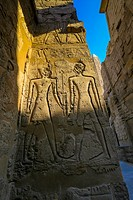 Carved stone relief at Luxor temple, Egypt, Luxor