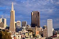 San Francisco View.