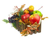 Composition from Artificial Fruits and Autumn Leaves in Wooden Box Isolated on White Background. Closeup.