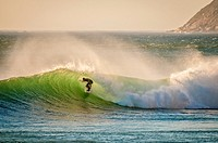 Luminesent Green waves with Surfer emerging off The Cape, South Africa.
