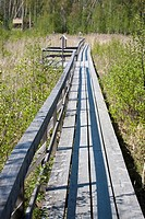 Siikalahti Wetland Nature Reserve, Finland.