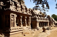 The Five Rathas Group, Mahabalipuram, UNESCO World Heritage Site, Near Chennai, Tamil Nadu state, India, Asia.
