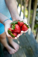 Strawberries in hands.