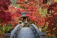 Autumn colors at Eikan-do Zen Temple, Kyoto, Japan.