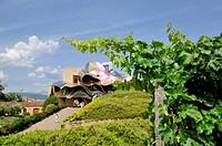 Hotel designed by Frank Gehry, Marques de Riscal, Elciego, Rioja Alavesa, Araba, Basque Country, Spain