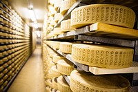 Garda cheese, Lombardy, Italy
