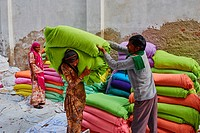 India, Rajasthan, Sari Factory, Textile are dried in the open air. Collecting of dry textile are folded by women. The textiles are hung to dry on bamb...