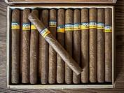 Overhead shot of Cohiba Esplendidos Cuban cigars inside case.