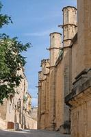 Tortosa, historical downtowm, Cathedral, XIVth to XVIII centuries, Tortosa, Ebro river, Tarragona, Catalunya, Spain.