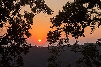 Sunset over the Himalayan foothills seen through trees.