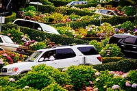 San Francisco, California, USA. view of the world famous Lombard Street with cars and curves.