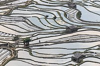 Sunset over YuanYang rice terraces in Yunnan, China, one of the latest UNESCO World Heritage Sites.