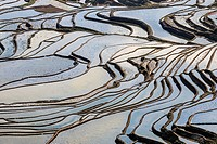 YuanYang rice terraces in Yunnan, China, one of the latest UNESCO World Heritage Sites.