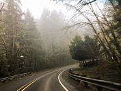 Right turn with rain coming down and fog in the air on this country highway road in Oregon.