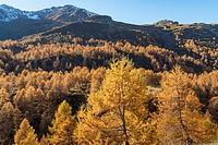 Switzerland, Canton Wallis, Simplon Pass