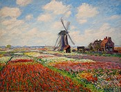 Champs de tulipes en Hollande. 1886. Claude Monet. Orsay Museum. Paris. France. Europe.