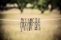 Empty clothesline and clothes pins with garden in the background.