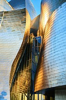 Detail of the Guggenheim Museum Facade Bilbao, Biscay, Basque Country, Spain, Europe.