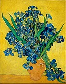 Vincent van Gogh - Irises - Van Gogh Museum, Amsterdam.