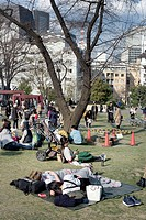 Public park, Japan.