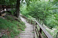 Wooden walkways and lookouts that run through the natural space of Covalagua. World Geopark Las Loras. Palencia. Castilla y León. Spain.