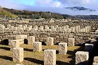 Aquis Querquenis. Roman ruins near Bande, Orense, Spain.