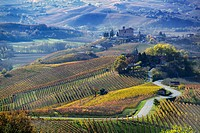 Road between the hills of Langa Piemonte Italy, at the bottom the castle of Grinzane cavour.