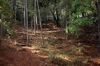 Picasso way in the Los Ports mountains near of Horta de Sant Joan. Tarragona Province
