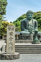 Great Buddha, Daibutsu, a monumental outdoor bronze statue of Amida Buddha at the Kotoku-in a Buddhist temple of the Jodo-shu sect, Kamakura, Kanagawa...