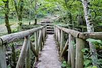 Wooden walkways next to the uprising and sink of Fuente Santiago. Natural monument of Monte Santiago. A natural space. Province of Burgos. Castilla y ...