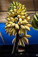 Bananas, Pasar Turi vegetables market, Singkawang, West Kalimantan, Indonesia