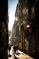 Street in Raval in Ciutat Vella district in Barcelona Catalonia Spain.